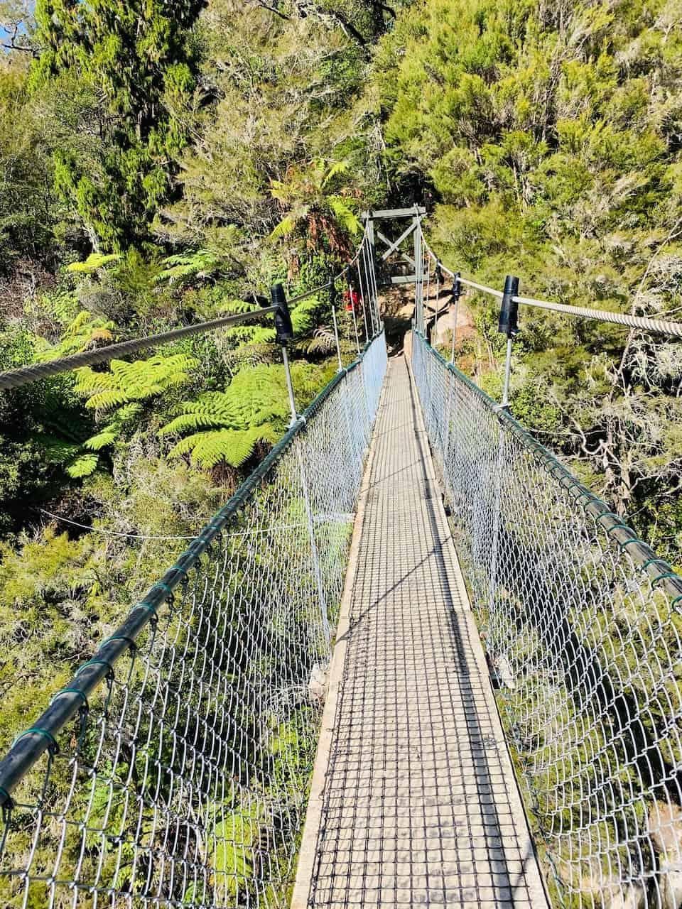 Abel Tasman Suspension Bridge