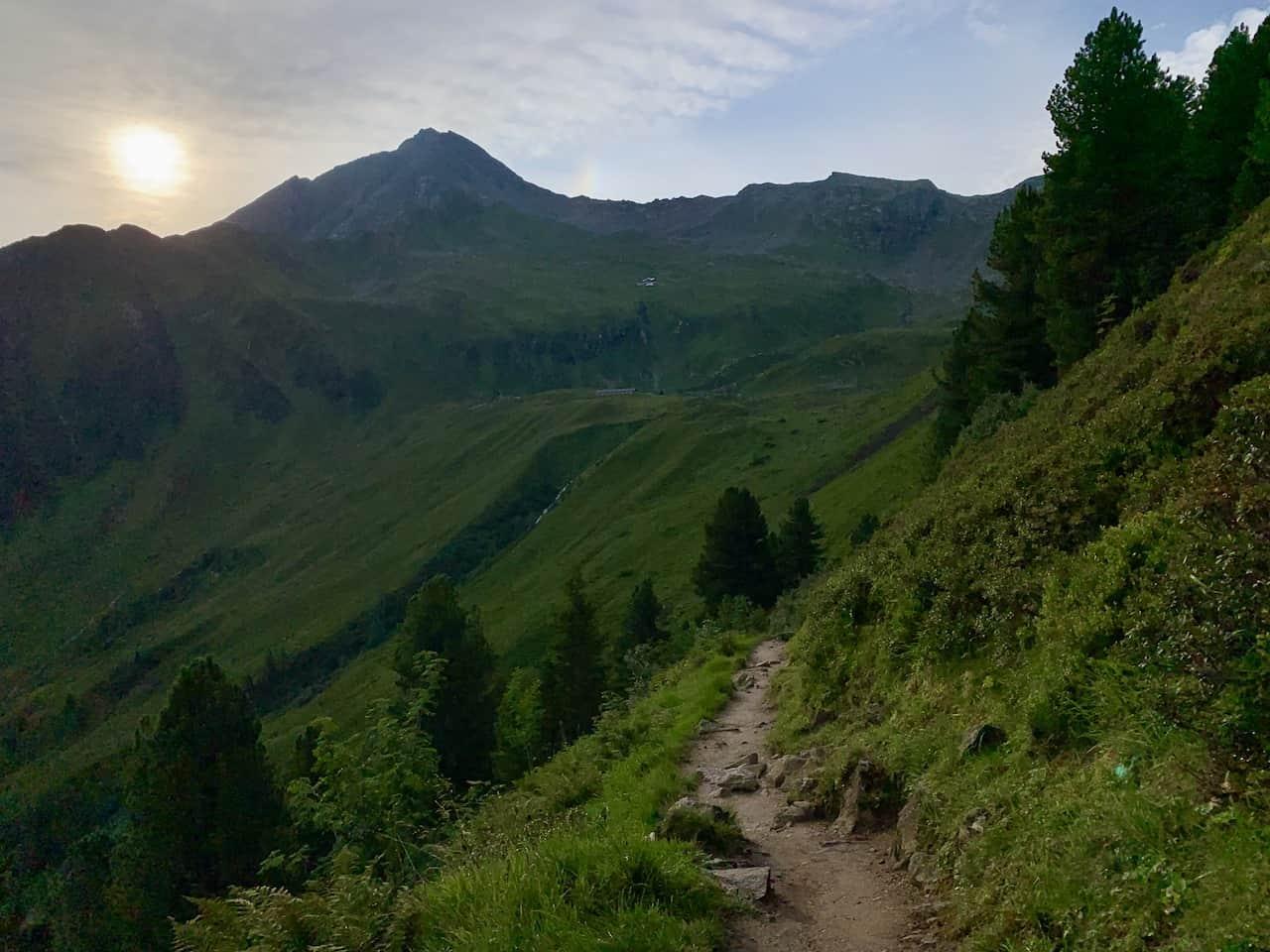 Ahorn Mountain Greenery