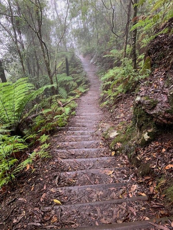 Furber Steps Blue Mountains