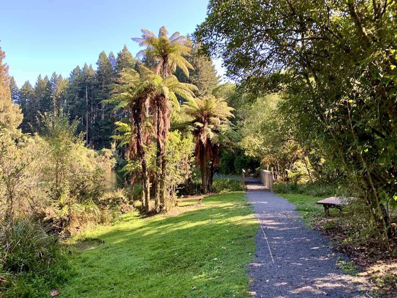 Hamurana Springs New Zealand