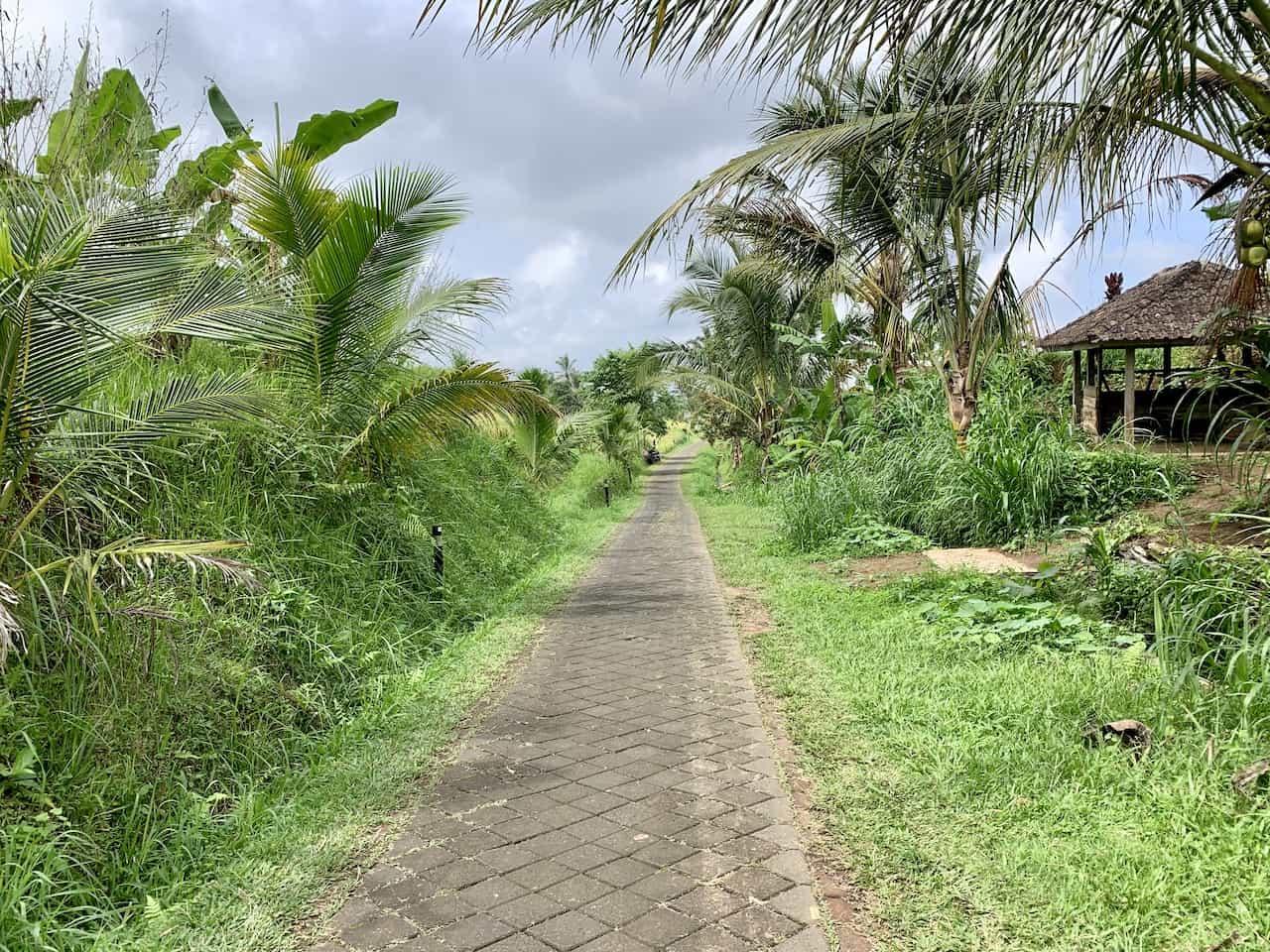 Jatiluwih Path Hiking