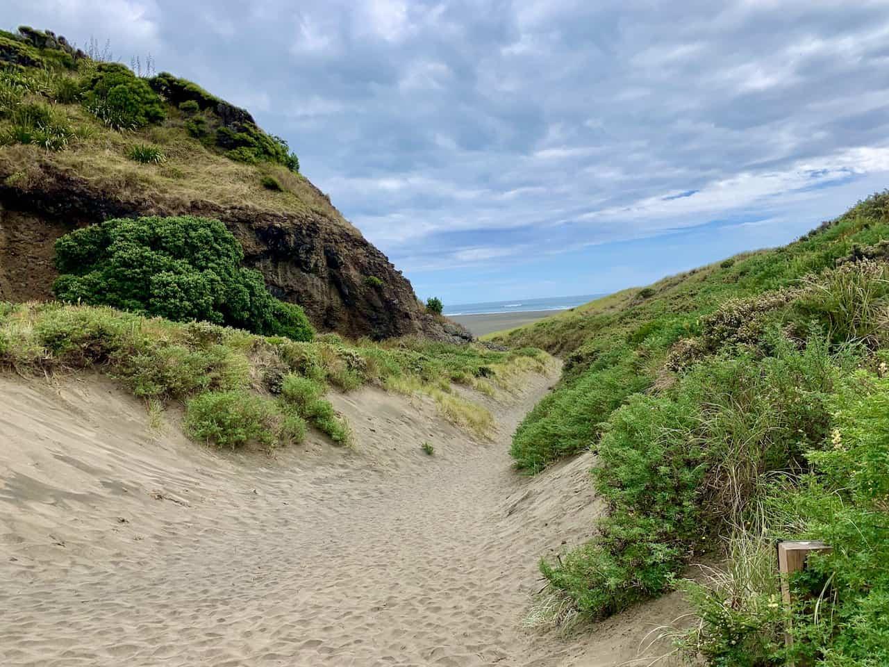 Karekare Beach Dunes