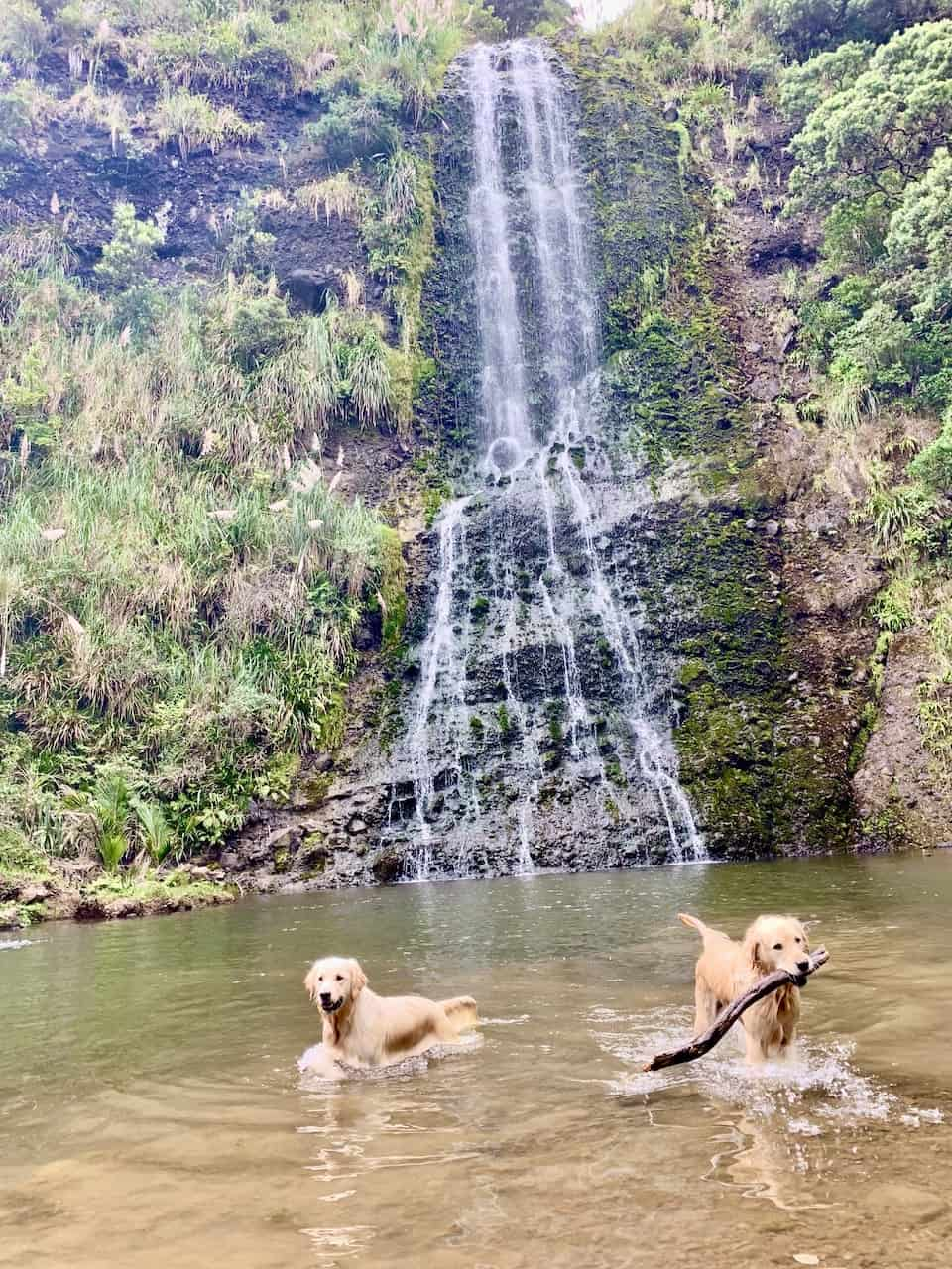 Karekare Waterfall