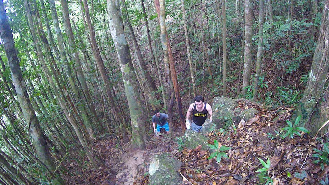 Khao Ra Jungle Hike