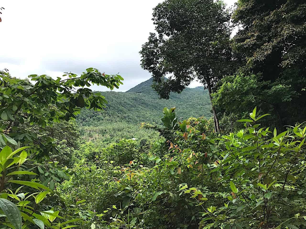 Khao Ra View