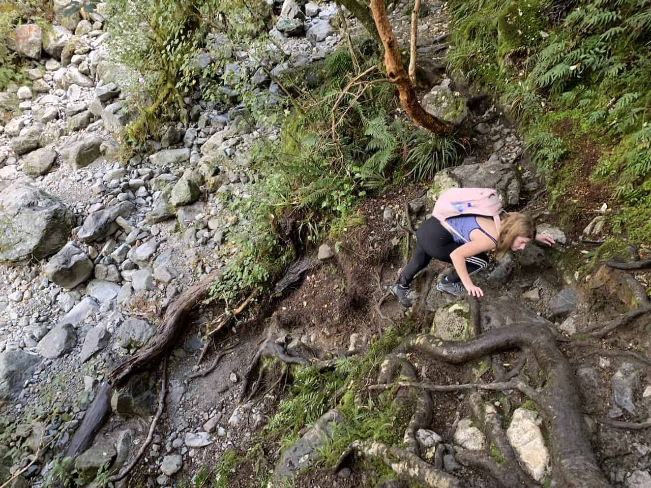 Lake Marian Track Climb