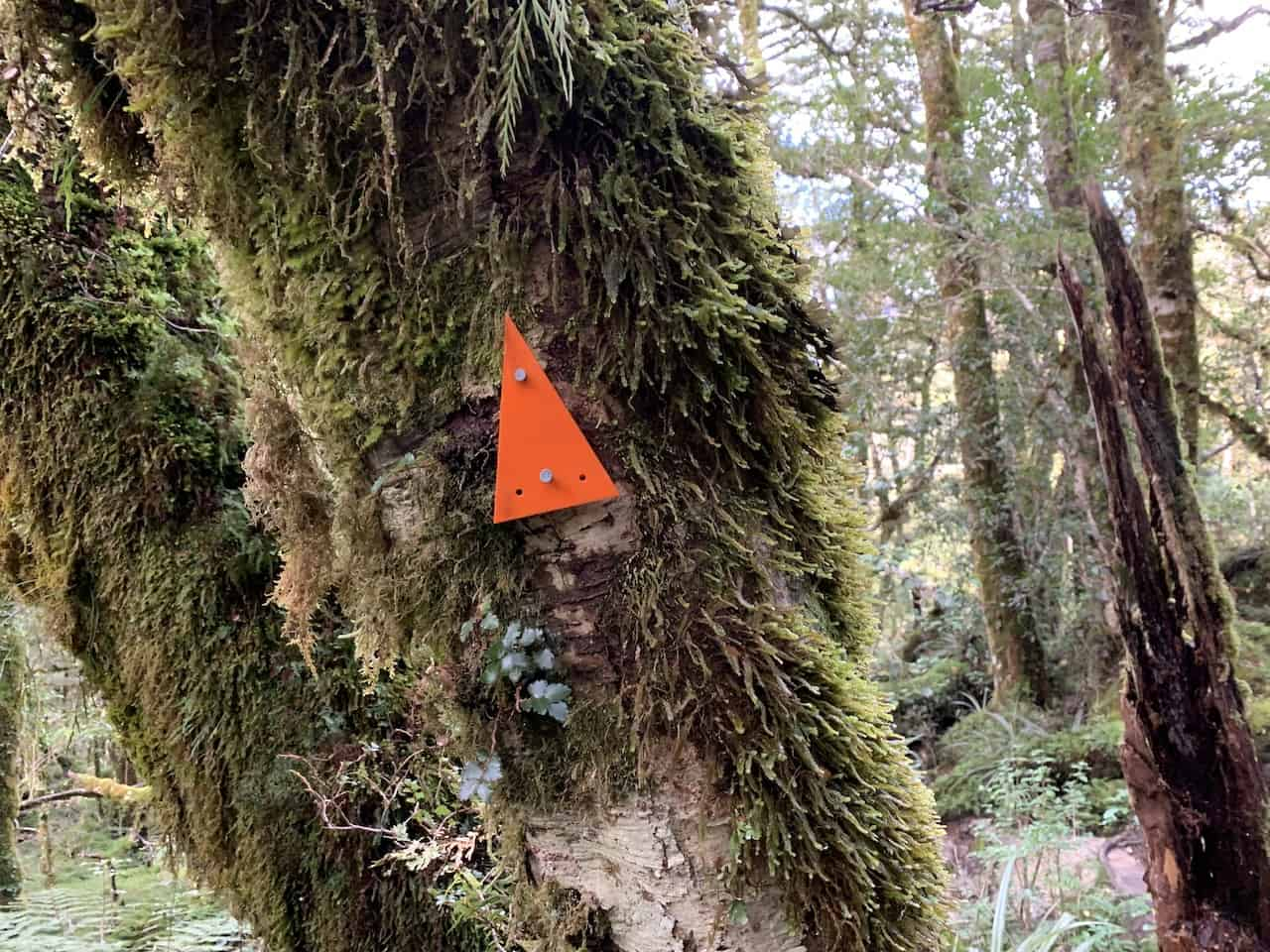 Lake Marian Track Trail Markers