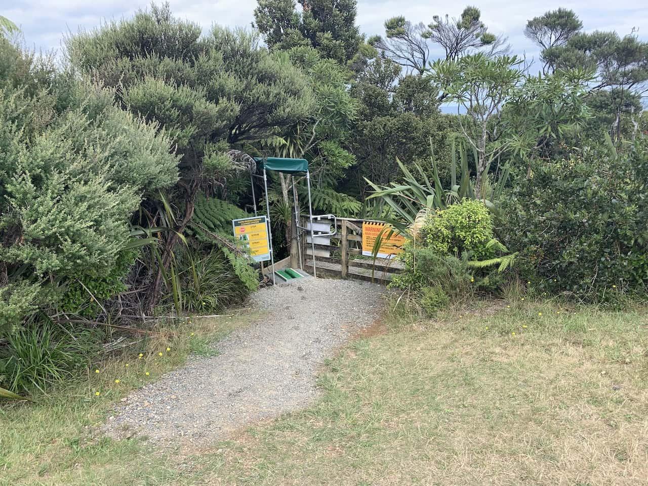 Mercer Bay Loop Exit