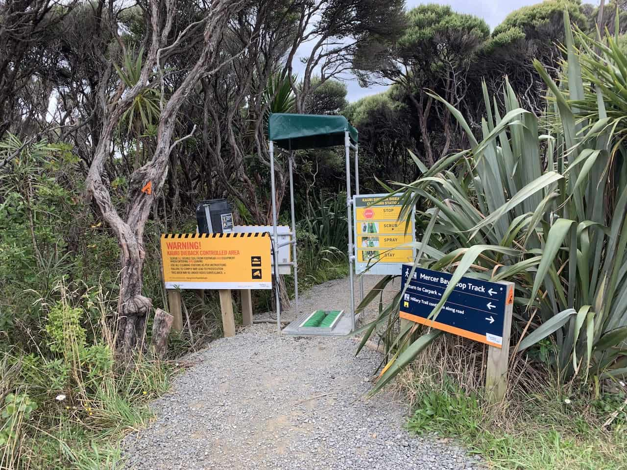 Mercer Bay Loop Track Entrance