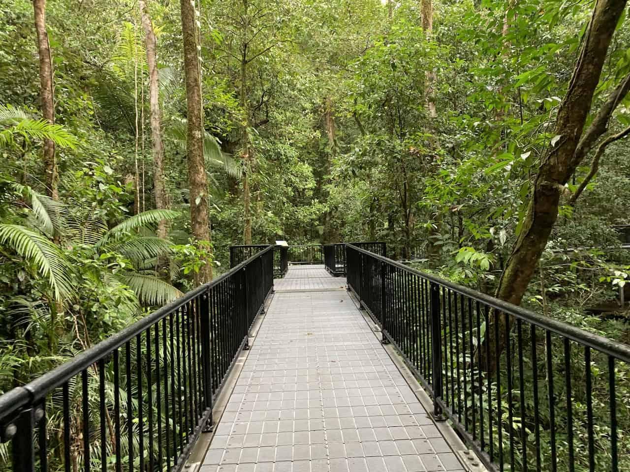 Mossman Gorge Boardwalk
