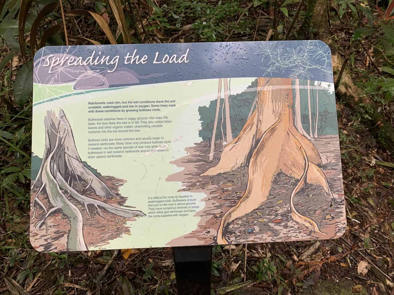 Mossman Gorge Info
