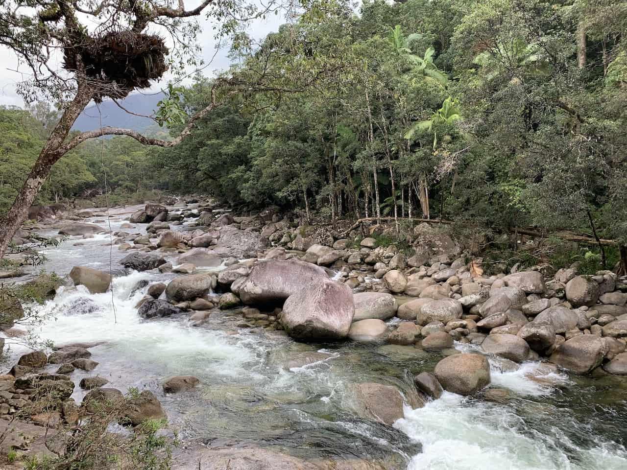 Mossman River Lookout Daintree
