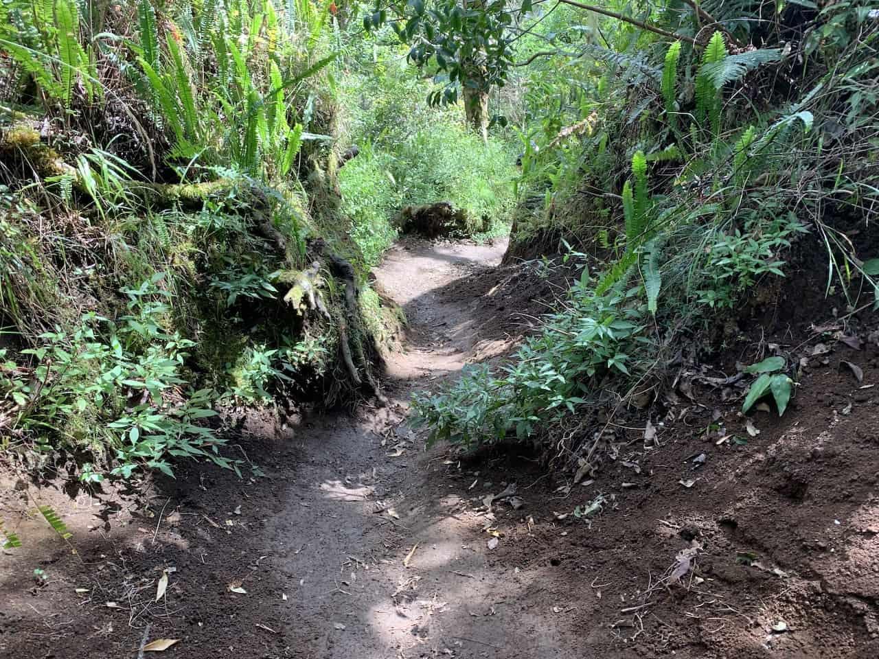 Mount Rinjani Route