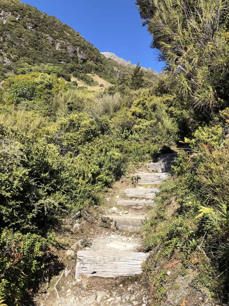 Red Tarns Track Steps