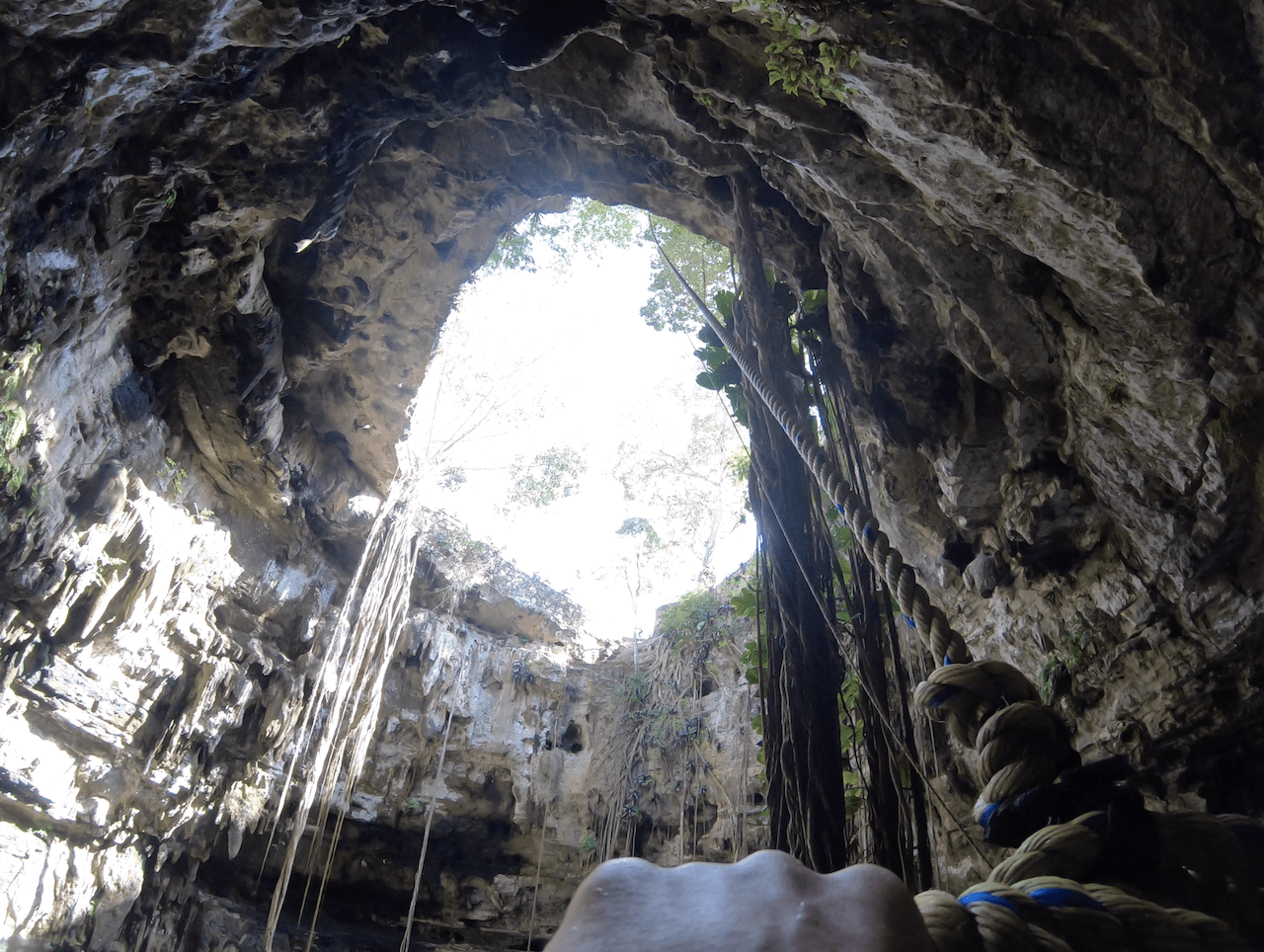 Rope Swing Cenote
