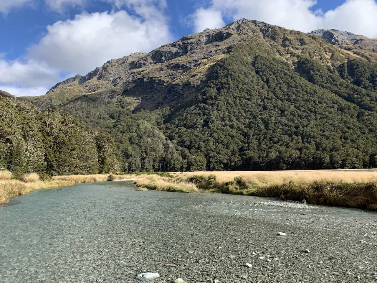 Routeburn Flats River