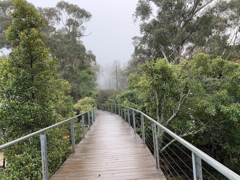Scenic World Walkway