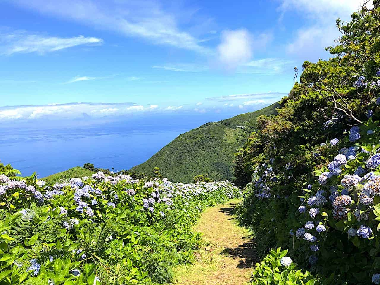 Serra do Topo - Caldeira do Santo Cristo – Fajã dos Cubres Trail