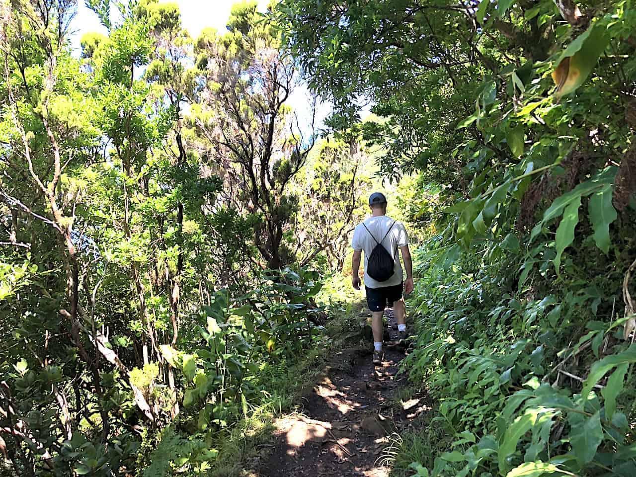 Serra do Topo Hike
