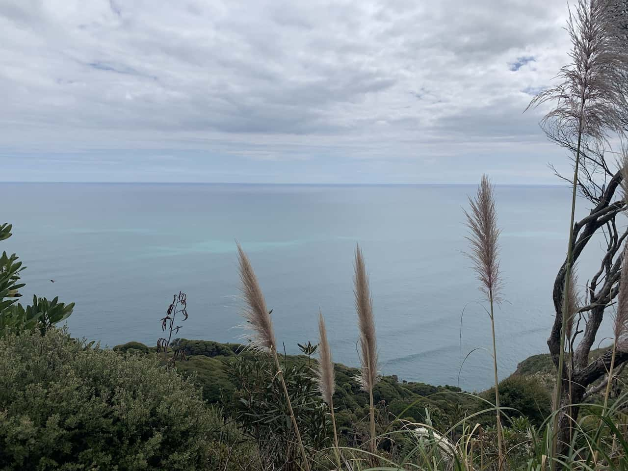 Waitakere Ranges Ocean