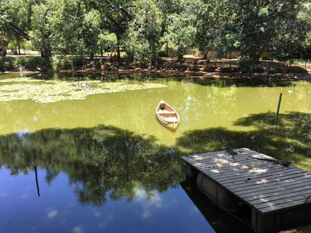Jardin Botanique Lake