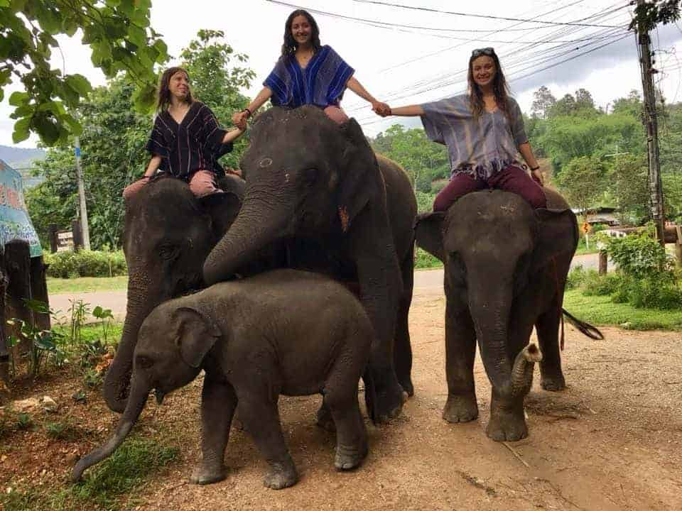 Patara Elephant Farm Girls