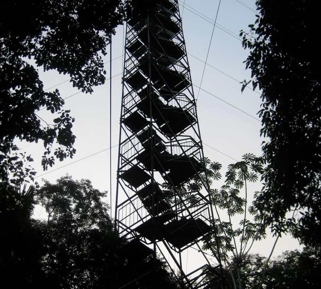 Refugio Amazonas Canopy Tower