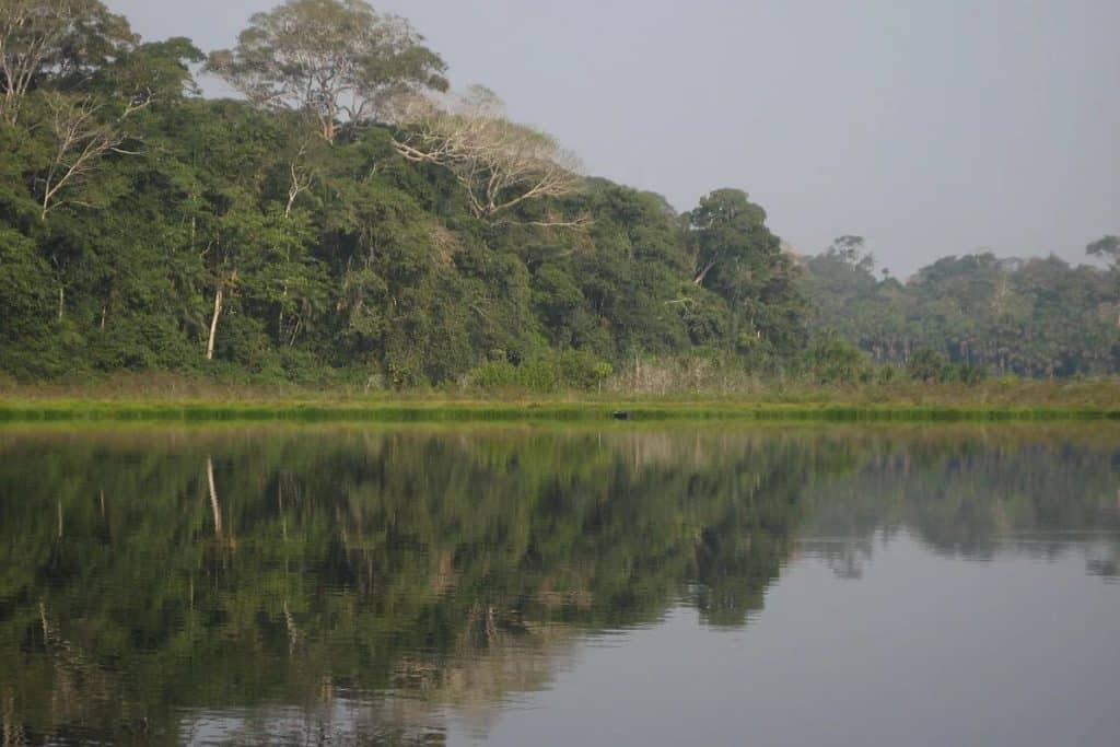 Refugio Amazonas Lake