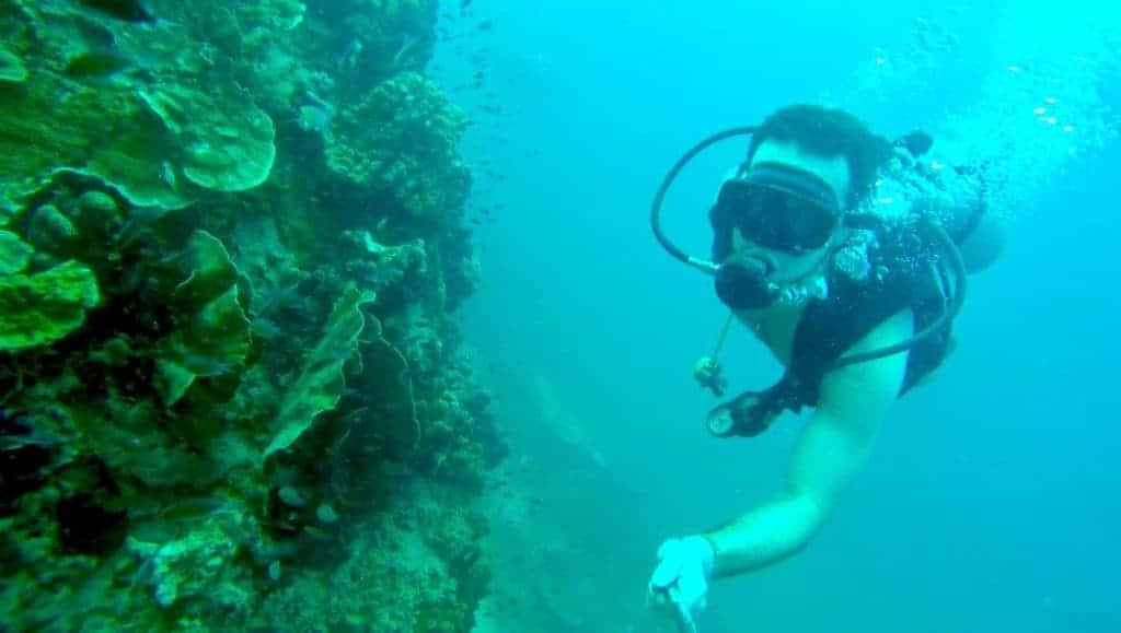 Scuba Diving Koh Tao 1