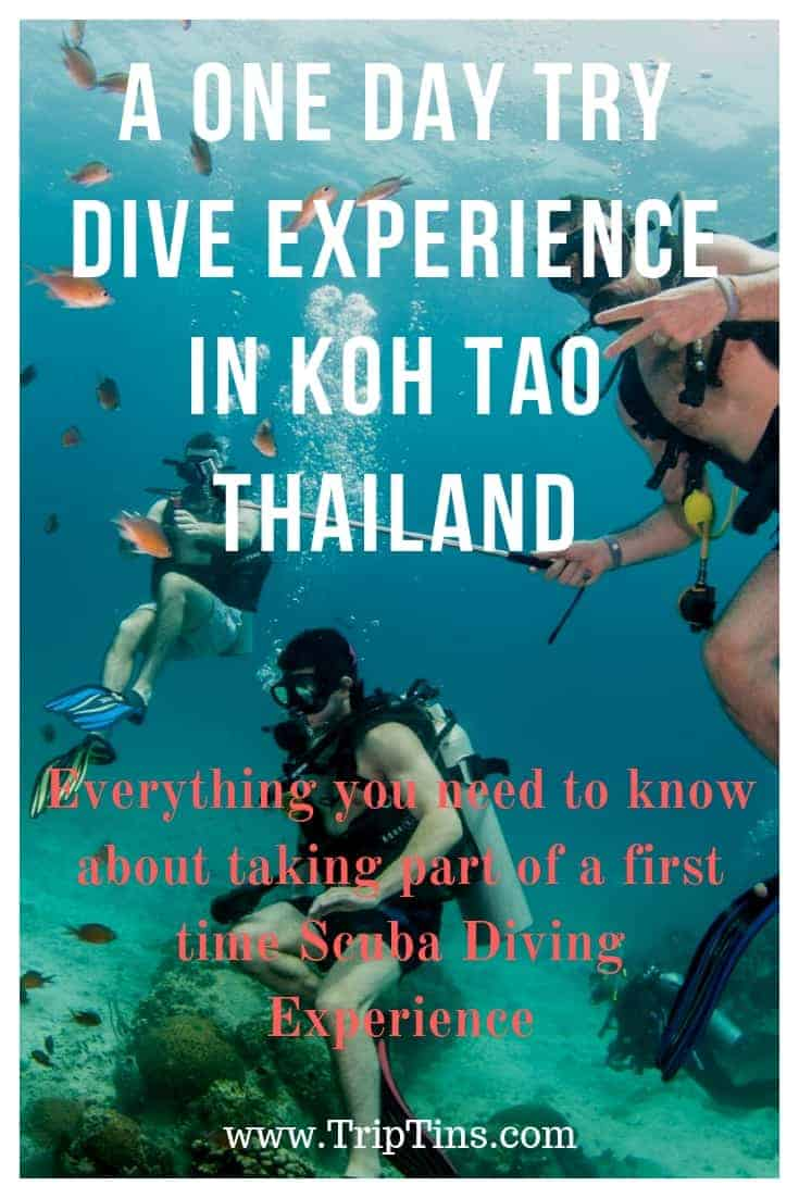 Try Dive Koh Tao