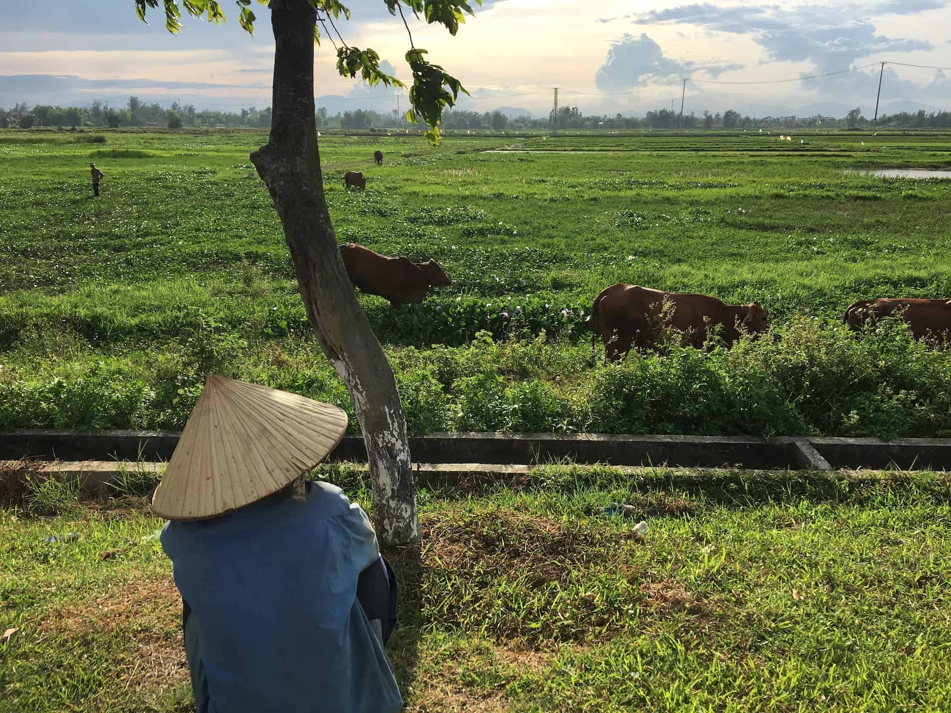 The Best 10 Day Vietnam Itinerary