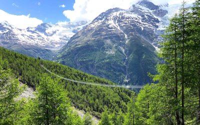 Charles Kuonen Suspension Bridge Guide