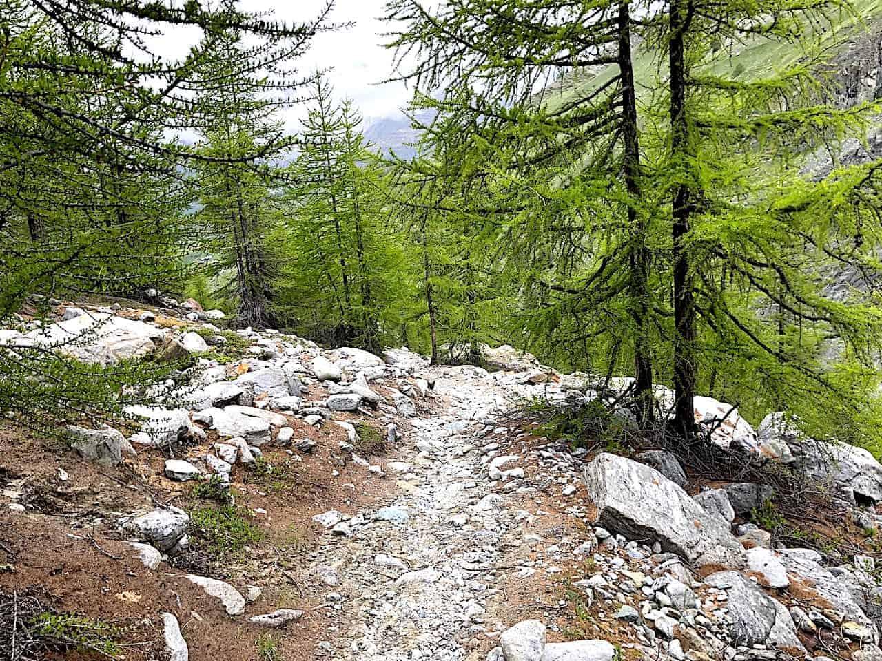Five Lakes Hike Switchback Trail