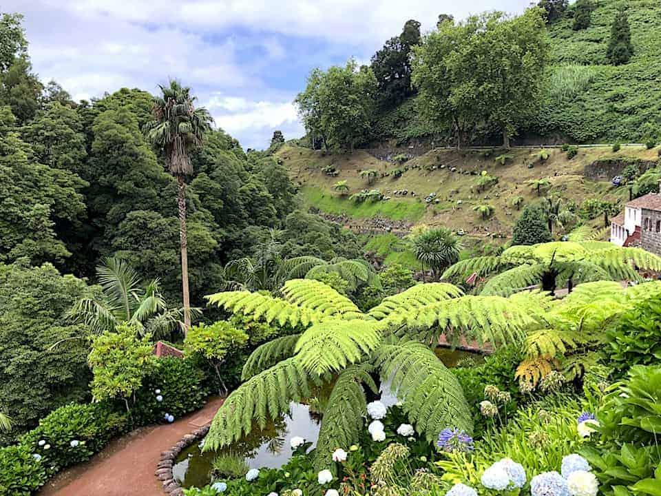 Azores Nature