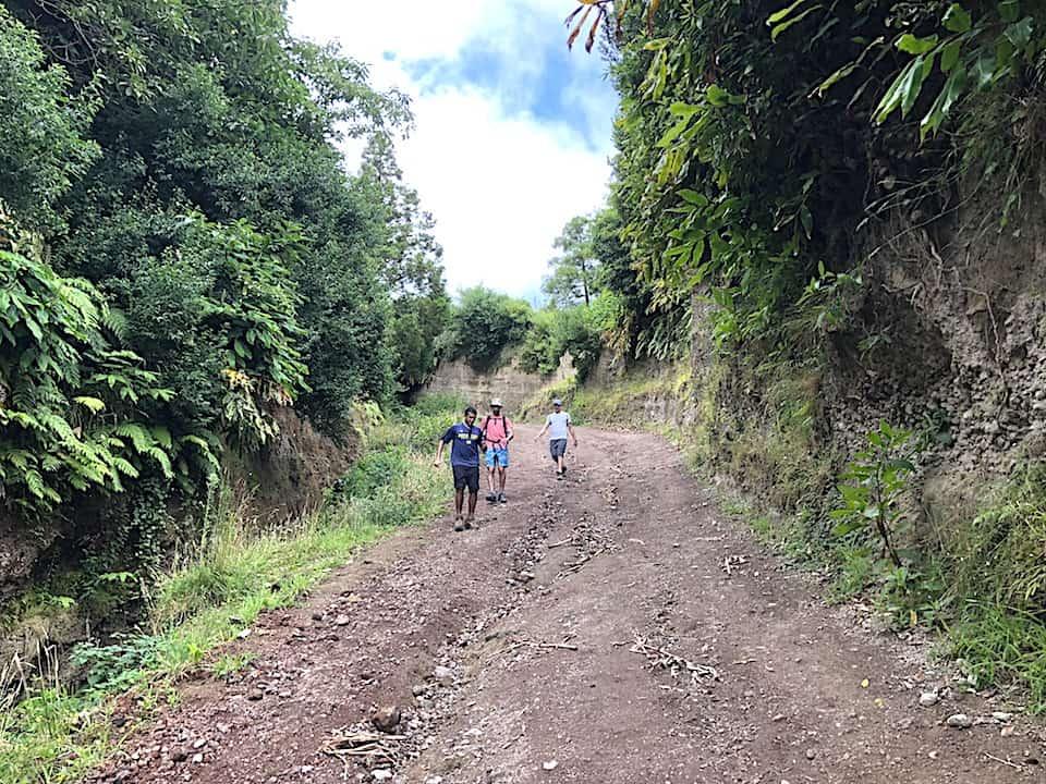 Mata do Canario Sete Cidades Hike Dirt Path