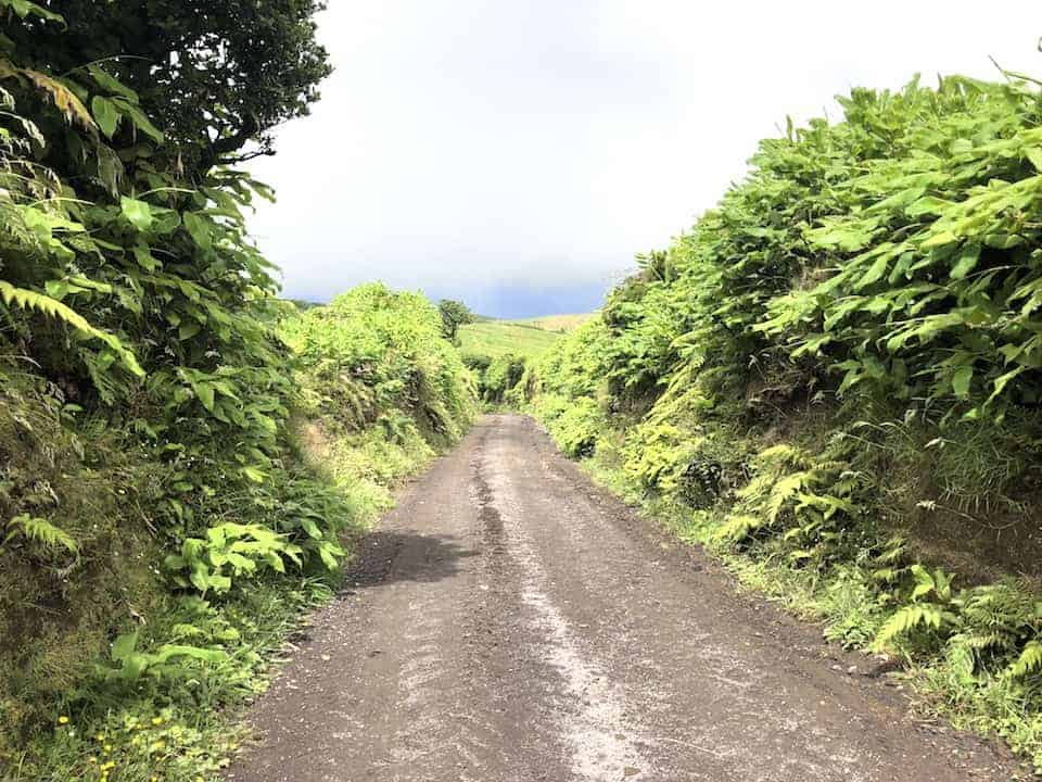 Mata do Canario Sete Cidades Hike Path