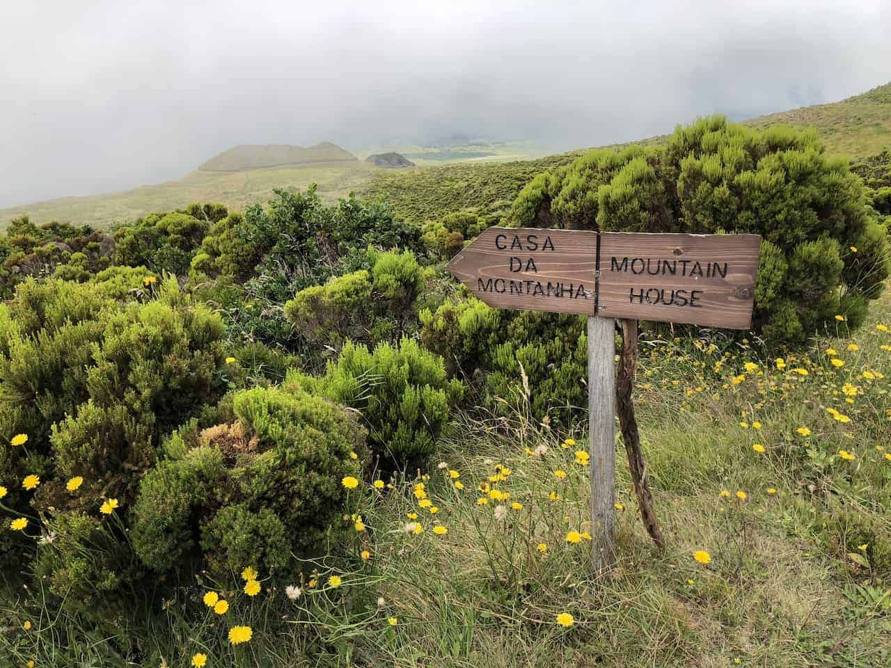 End of Mount Pico Trail