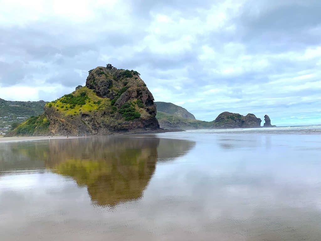 Walks in the Waitakere Ranges