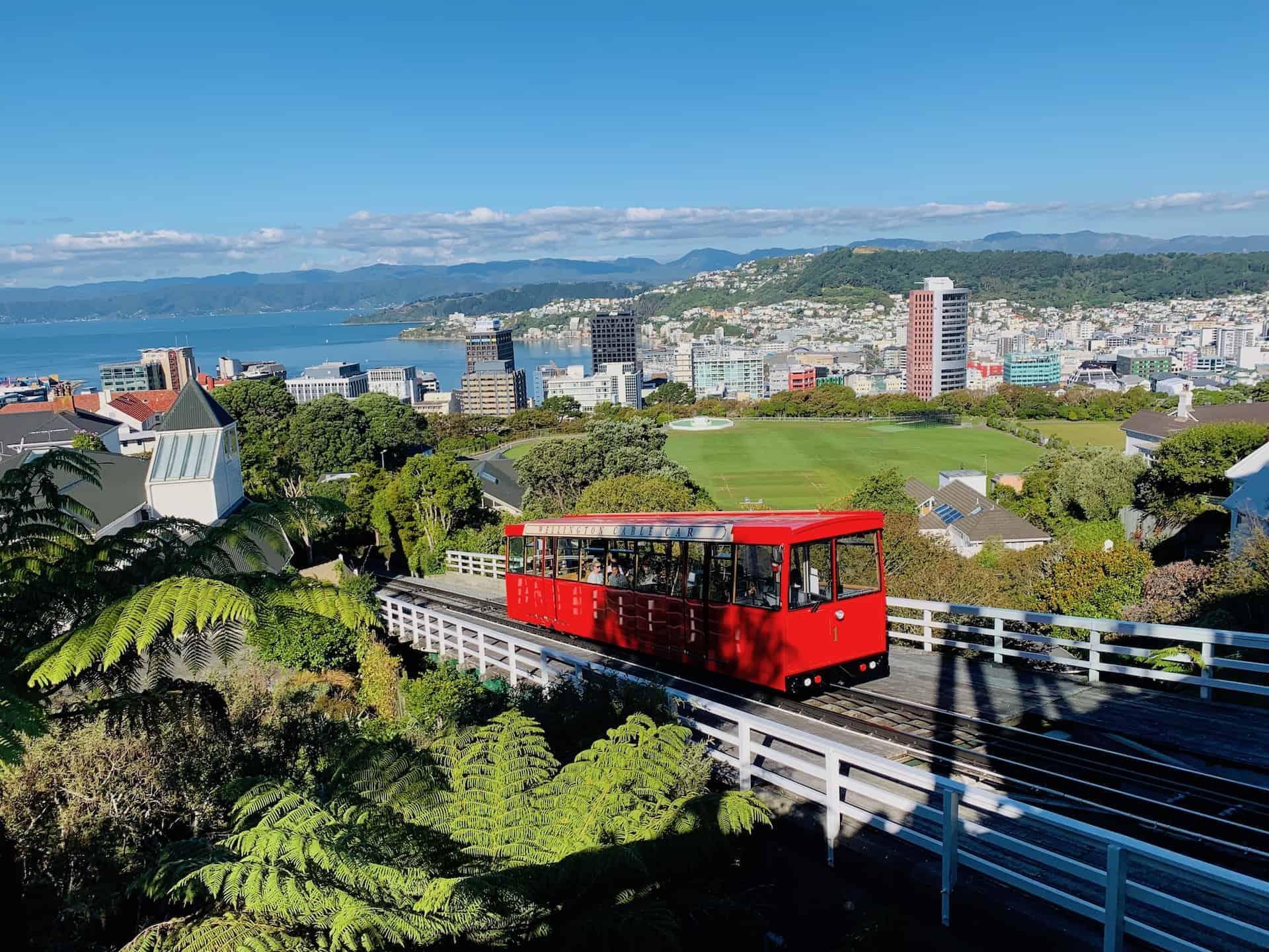8 Must Do Wellington Activities