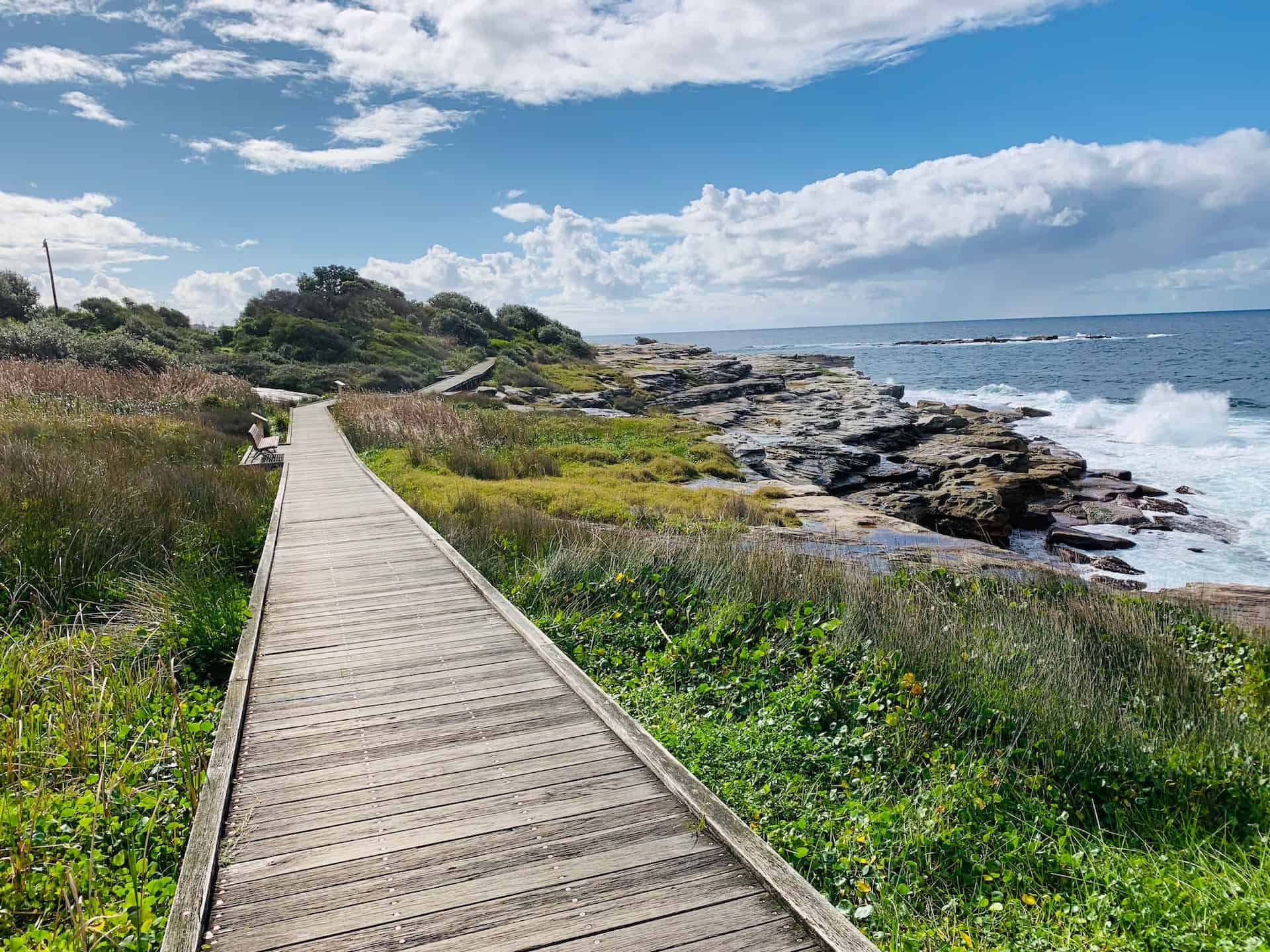 The Coogee to Maroubra Walk