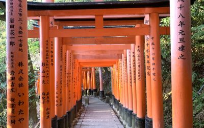 The Ideal Japan Itinerary 14 Days