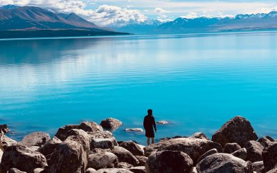 A Legendary New Zealand Road Trip 3 Weeks Itinerary