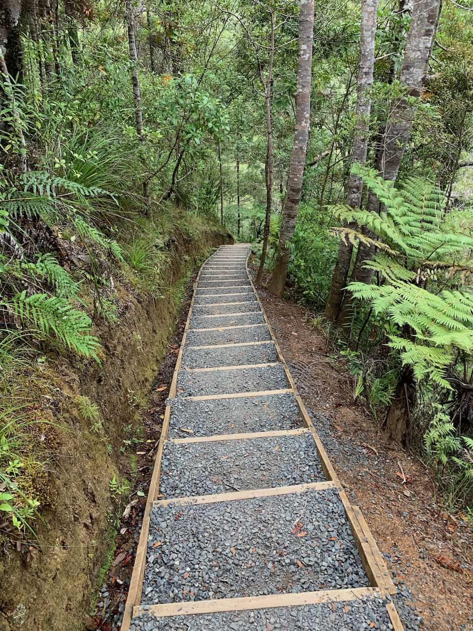 Stairs to Top of Kitekite Falls