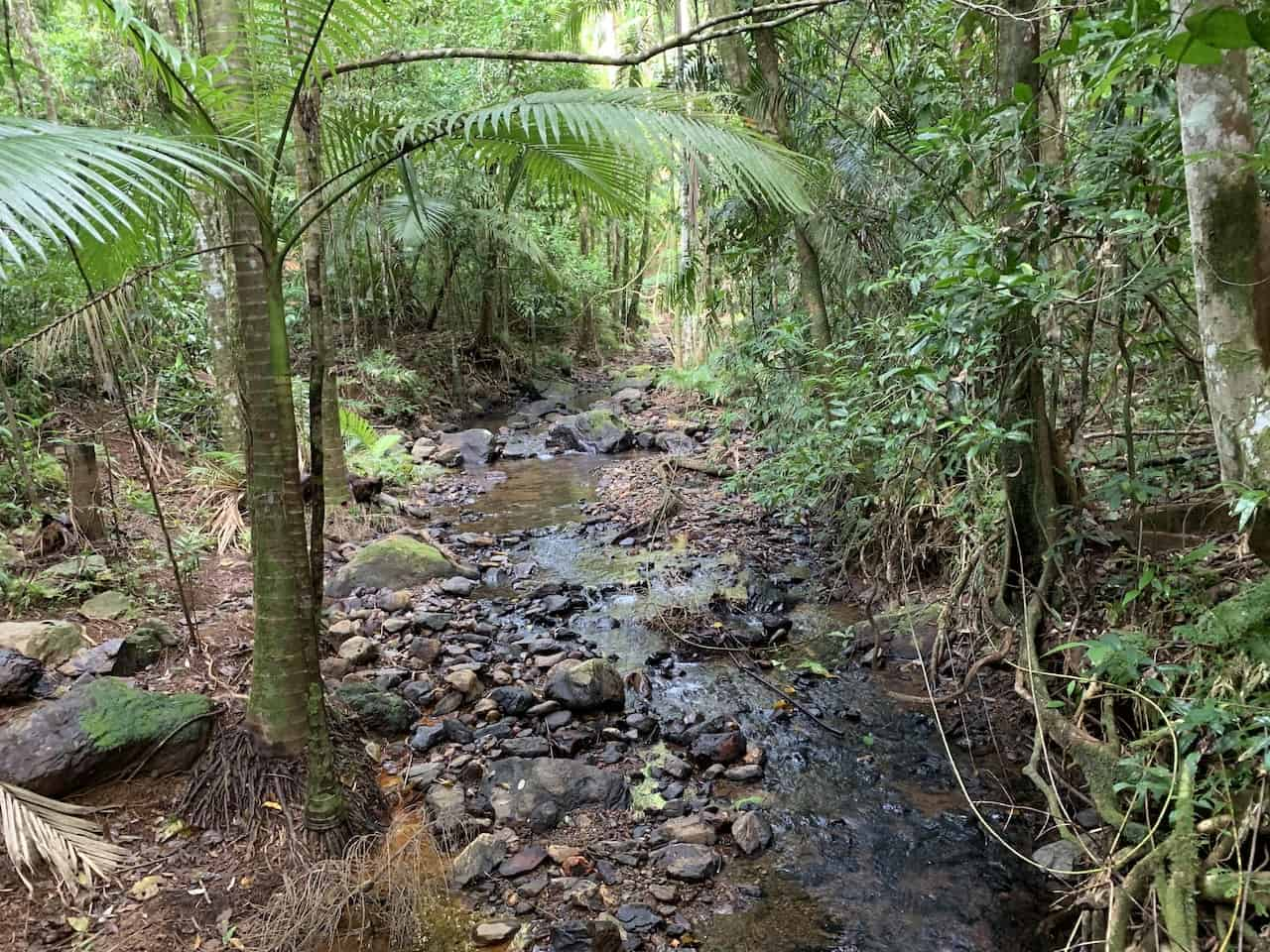 Bush Tucker Trail River