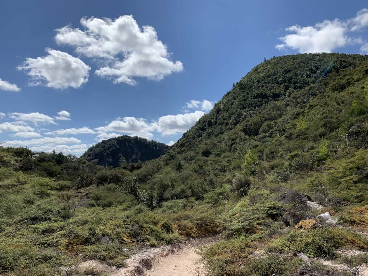 Rainbow Mountain Scenic Reserve Forest