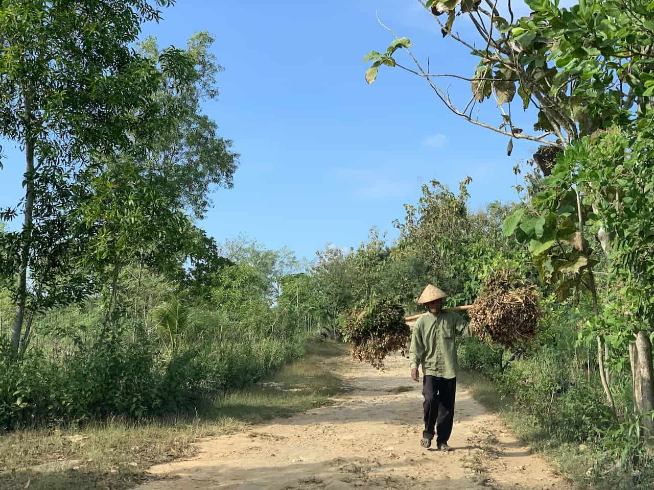 Yogyakarta to Goa Jomblang