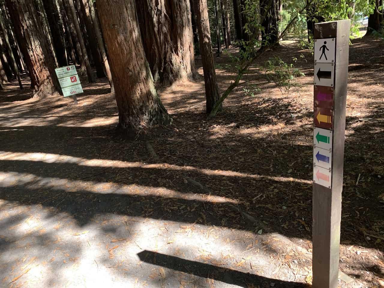 Rotorua Trails