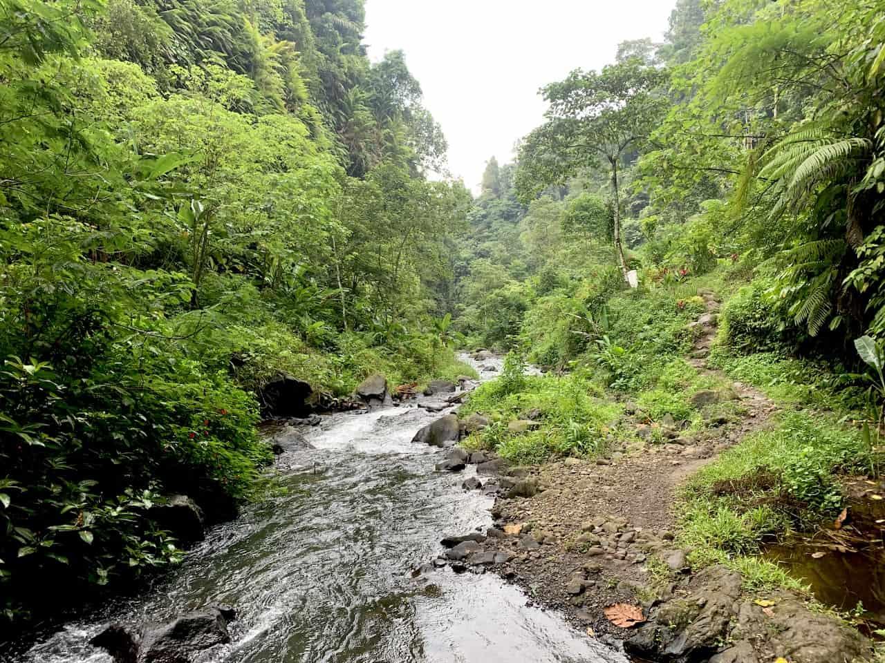 Bali Waterfall Hike