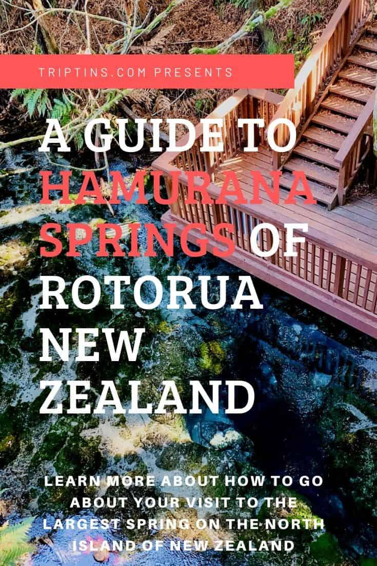 Hamurana Springs Rotorua New Zealand