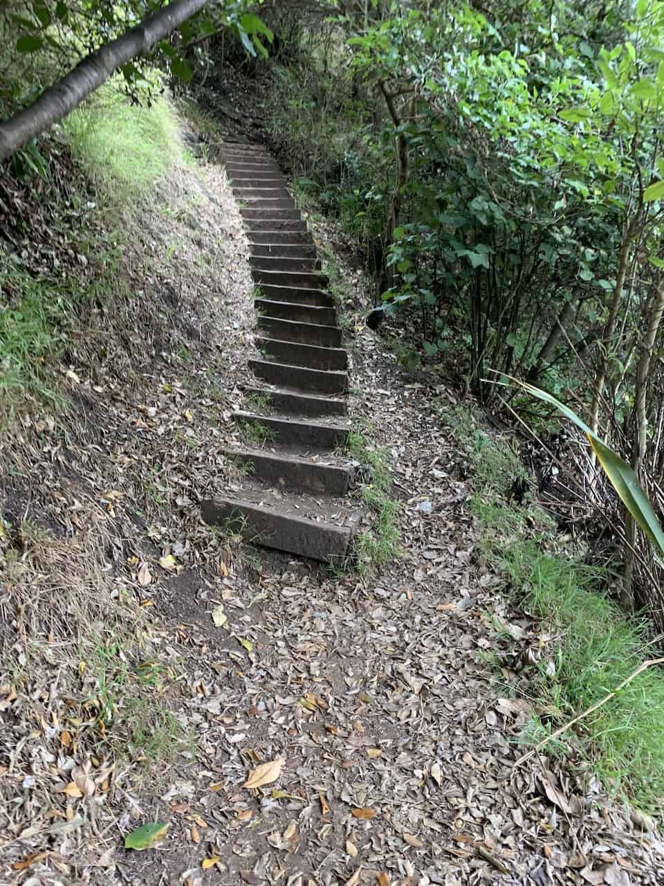 Tasman Lookout Stairs